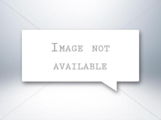 2016 WHITE Dodge Grand Caravan (2C4RDGBG9GR) with an V6 Flex Fuel 3.6 Liter engine, Automatic 6-Spd transmission, located at 412 Auto Vista Drive, Palmdale, 93551, (661) 945-0620, 34.592636, -118.136681 - Photo #2
